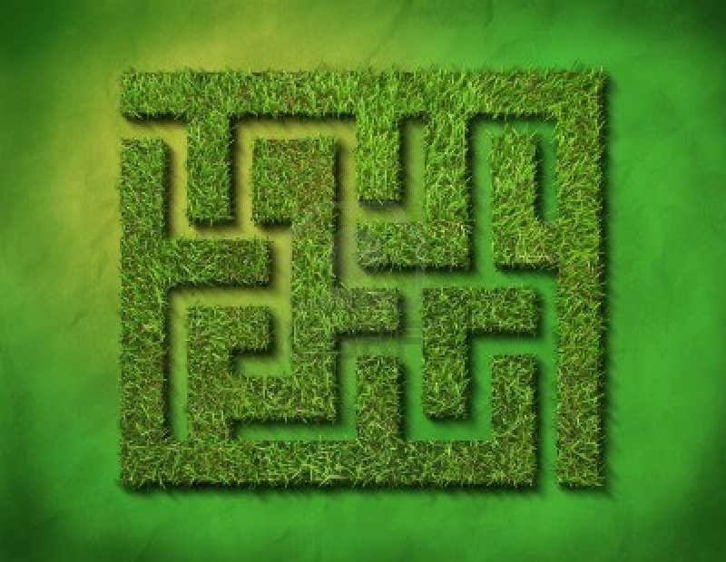 Through The Maze